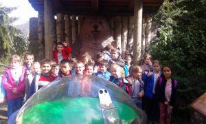 Visite au parc animalier des Pyrénées